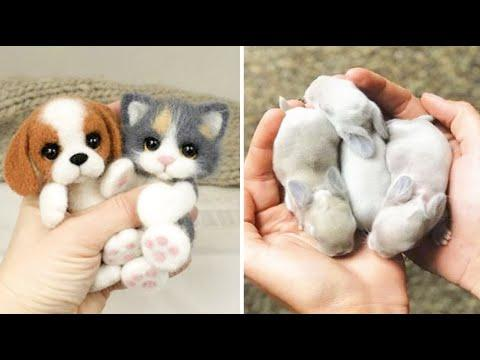 Cutest baby animals Videos Compilation Cute moment of the Animals - Cutest Animals #44