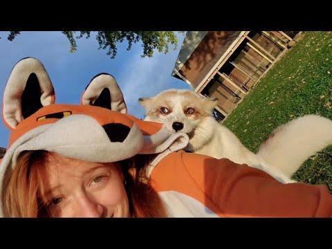 Jagger Fox wakes up going hehehe! #Video
