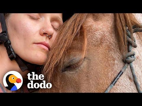 Woman Slowly Becomes Best Friends With An Anxious Wild Horse #Video