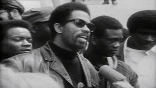 Remembering the Black Panthers