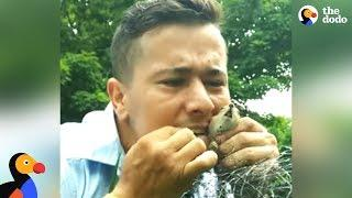 Mailman Rescues Trapped Chipmunk | The Dodo