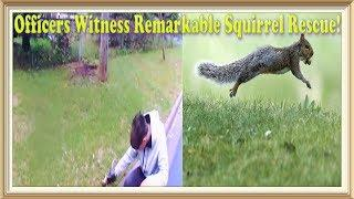 Officers Witness Remarkable Squirrel Rescue!