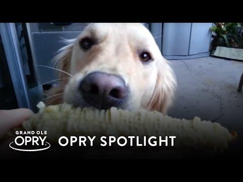 Top 5 Reasons Country Dogs Have It Made | Opry Spotlight | Opry
