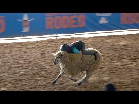 5 YEAR OLD SPENCER'S MUTTON BUSTIN WIN - Mar 14 2019 Houston TX | TexasGirly1979