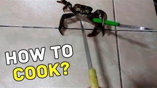 HERE'S WHAT HAPPENS, WHEN A CRAB REFUSES TO BE COOKED!
