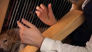 Carol of the Bells on a Harp