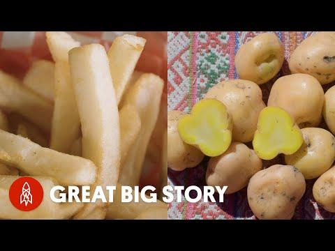 Everything You Need to Know About Potatoes Video