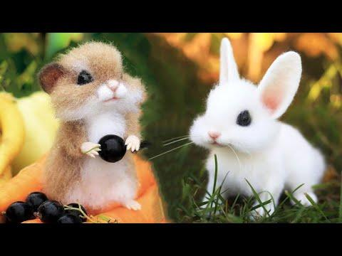Cutest baby animals Videos Compilation Cute moment of the Animals - Cutest Animals #22