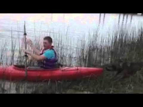 Dog Wont Let His Owner Go Kayaking