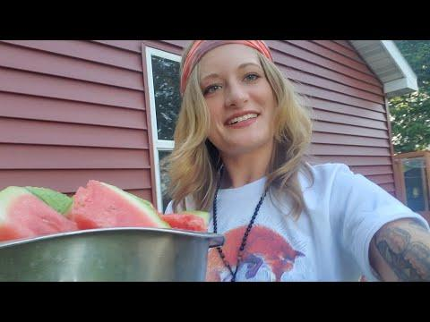 All the foxes get watermelon video
