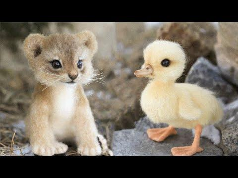 Cutest baby animals Videos Compilation March 2021