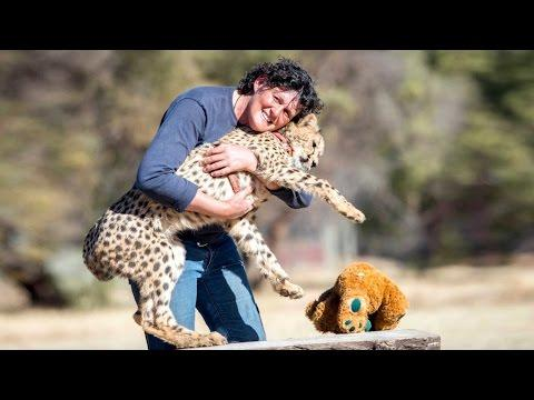 My Pet Cheetah Helped Me Through Cancer