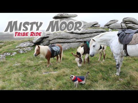 Misty Moorland Tribe Ride Video. Emma Massingale