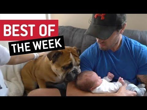 BEST OF THE WEEK - Nice To Meet You