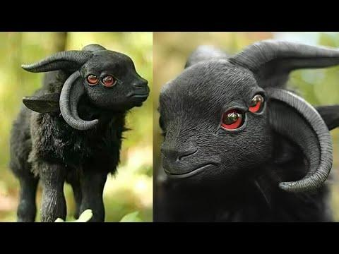 7 Mythical Creatures That Existed in Real Life Video