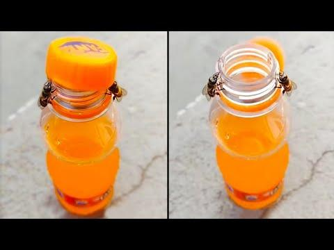 Watch These Two Bees Open A Bottle Of Soda #Video