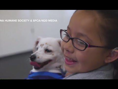 Deaf Girl Teaches Deaf Puppy Sign Language