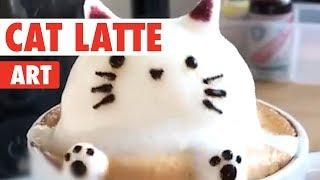 Cat Latte Art | Coffee and Kittens!