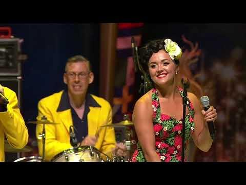 The Jive Aces Live -