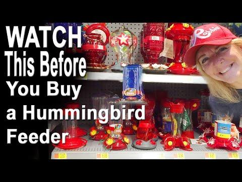 Hummingbird Feeders BE AWARE of Issues Before YOU Buy, EASY to Clean, Bees Ants & DIY Recipe Nectar