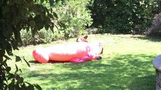 Cub playing with inflatable flamingo
