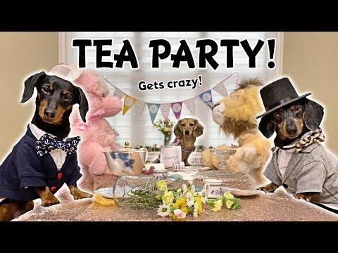 Ep#14: Daphne Hosts a Tea Party -  with Crusoe & Oakley!