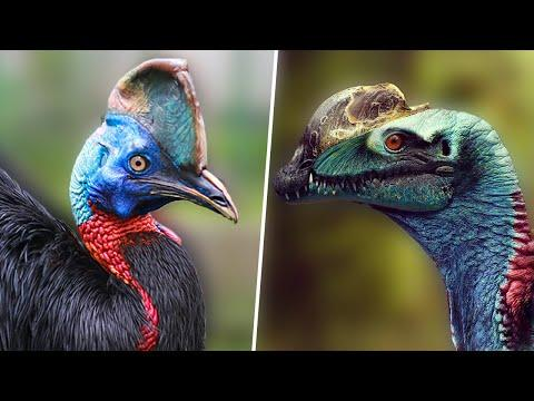 9 Birds That Are Secretly Living Dinosaurs Among us