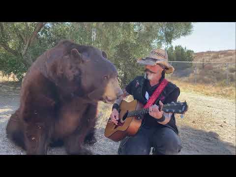 Ben the Bear Loves Classic Hank Williams Video