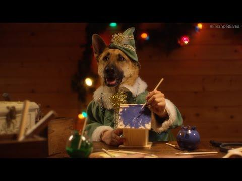 Santa's Elves - Dogs And Cats With Human Hands Making Toys - Frespet