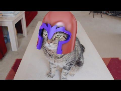 X-Men: Magneto Cat Is Out Of Control