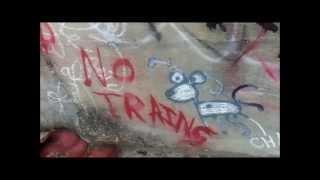 FREE DIRT - Train