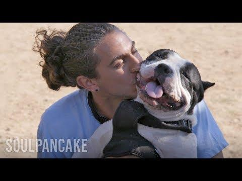 These Adorable Dogs & Their Dads Will Brighten Up Your Day | Inside Intimacy