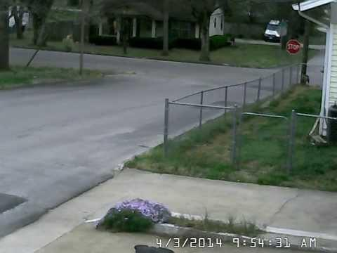 Dogs Watch FedEx Driver Chase Rolling Truck Down The Hill!
