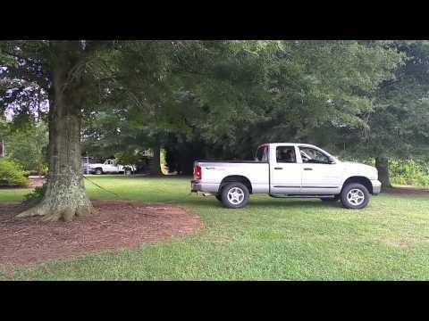 Truck Vs. Tree