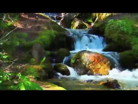 Waterfalls With Soothing Natural Sounds And Reflective Meditations