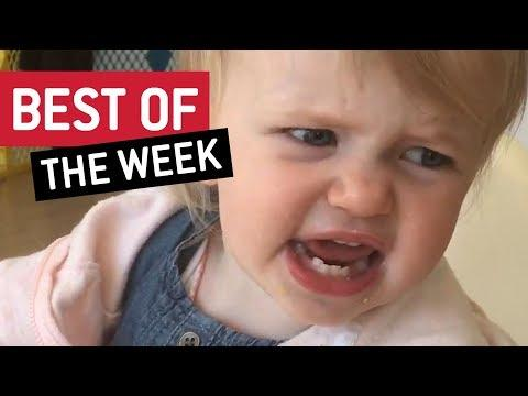 BEST OF THE WEEK - Cheese Please
