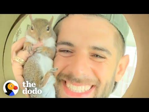 Guy Tried To Release His Rescue Squirrel But She Always Came Back #Video