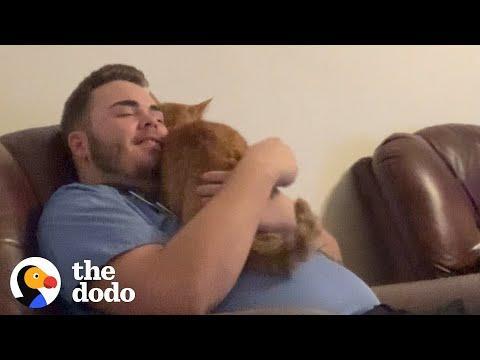 Cat And His Dad Speak The Same Language #Video