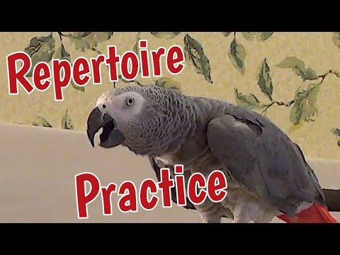 Einstein's Repertoire Practice Video
