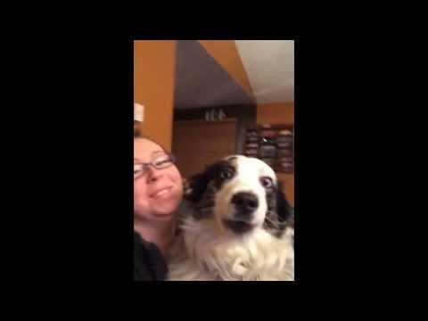 Dog Sings Along With Owner