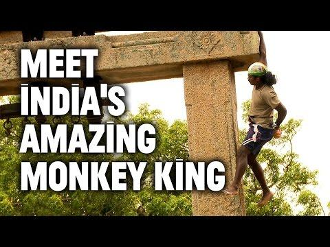 From Suicidal To Scaling Walls: Meet India's Amazing Monkey King