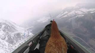 Ursprungs-Bauer erfüllt Huhn Traum vom Fliegen!