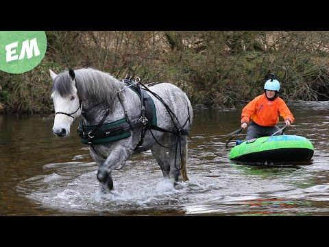 Moorland Mountain Boarding & up to our necks in the River! Video