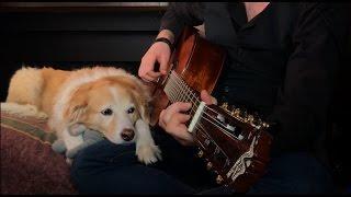 Johnny Cash - Hurt Cover (NIN) Fingerstyle w/ Guitar Tabs