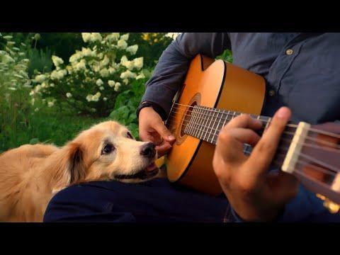 Saying Goodbye (What a Wonderful World) #Video