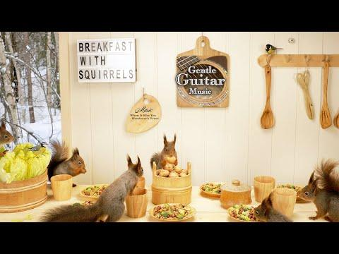 Breakfast with Squirrels and Gentle Guitar Music Video