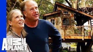 Top 5 Outdoor Adventure Treehouses!