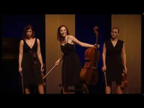 Humorous Classical Music Quartet - Outstanding Performance!