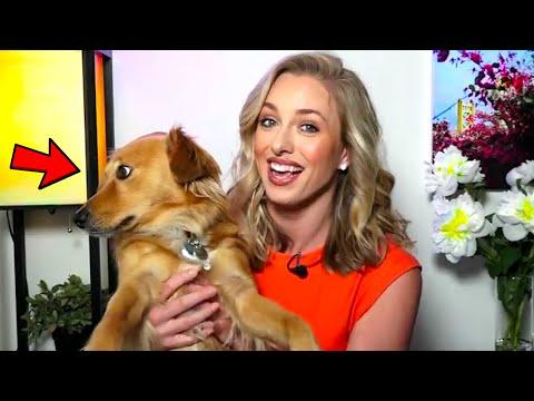 Best Work From Home News Bloopers 2