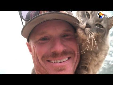 Cat Is So Grateful Firefighter Saved His Life
